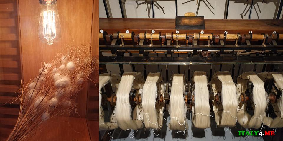 Музей шёлка в городе Комо, как растут жуки-шелкопряды