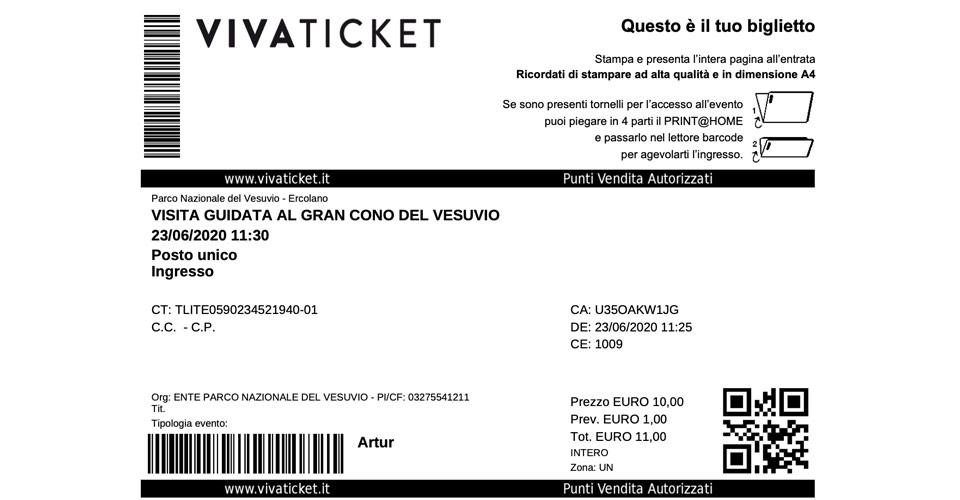 Электронный онлайн билет на Везувий